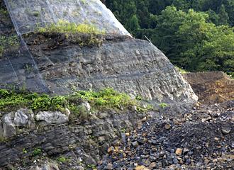 恐竜化石発掘地